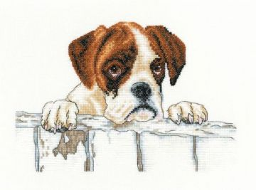 Villager Jim Cross Stitch Kit -Bailey Cross Stitch Kit